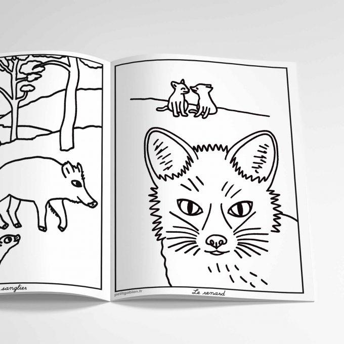 Livre de coloriages animaux des Calanques, le renard et le sanglier