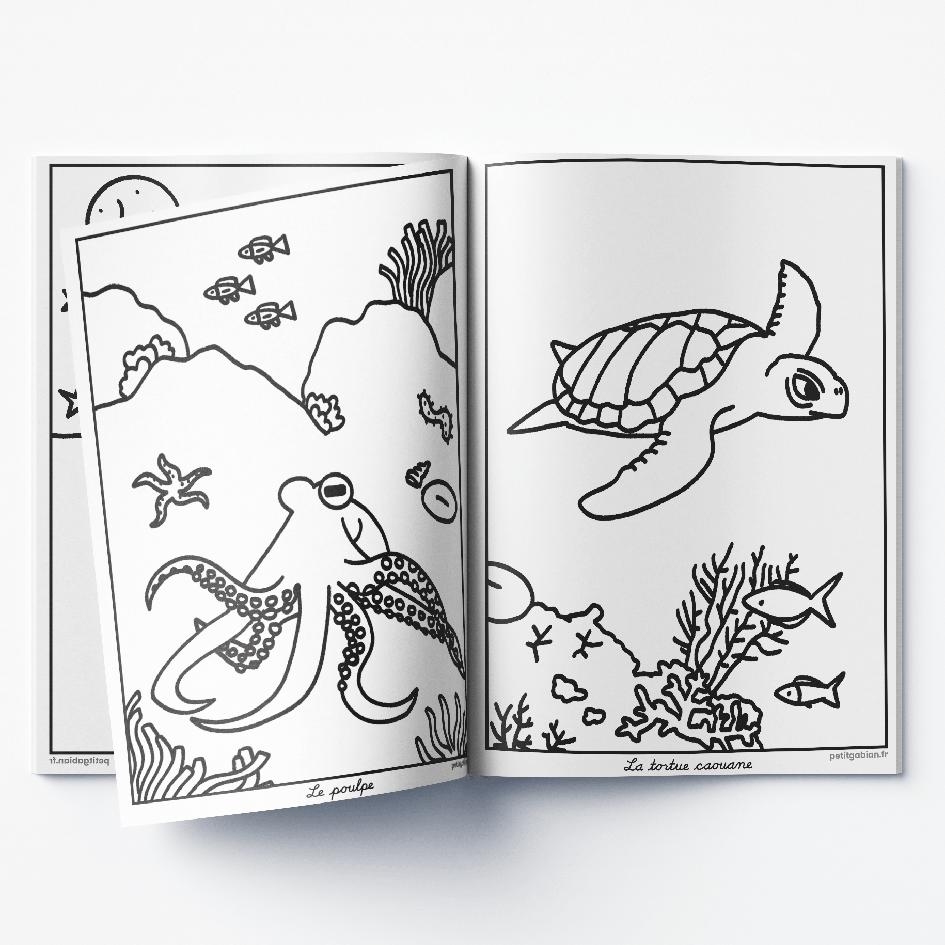 Page du livre de coloriages sur les animaux des Calanques